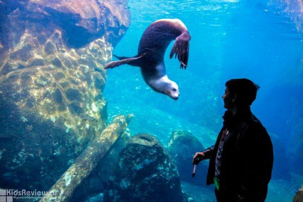 Photo of the Smithsonian Zoo in Washington DC, United States