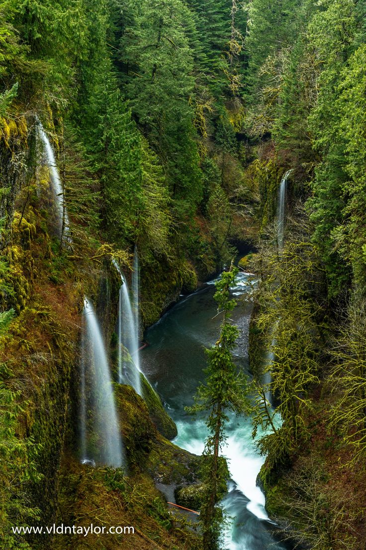 Eagle Creek Trail Oregon US by Vldn