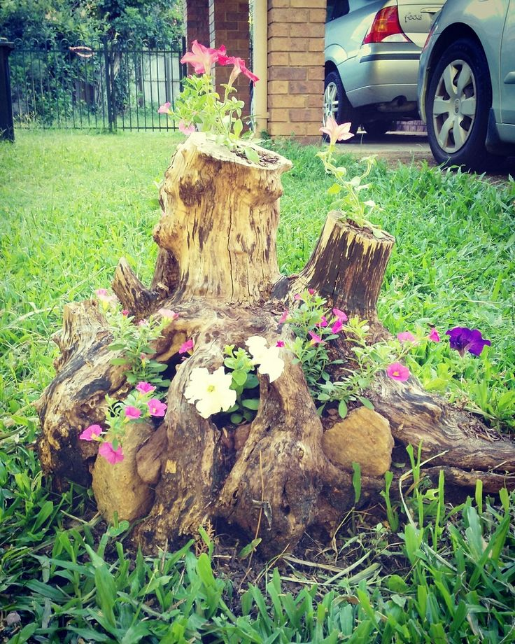 fairy garden on a tree stump