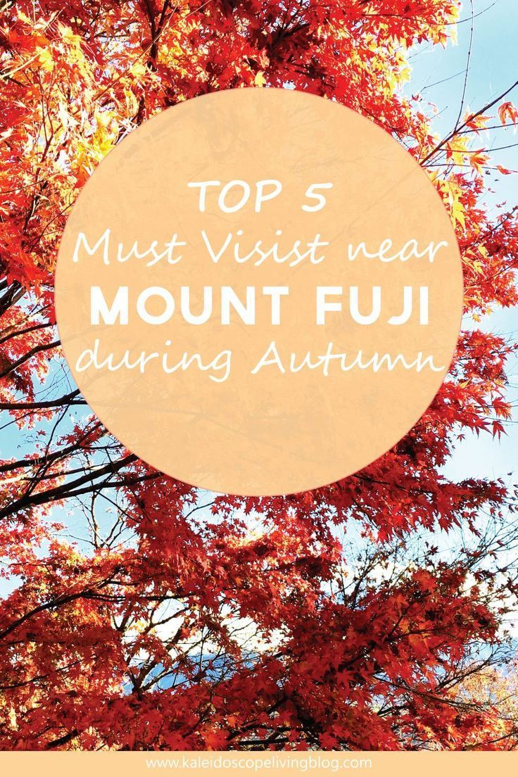Top 5 Recommended Places to Visit near Mount Fuji