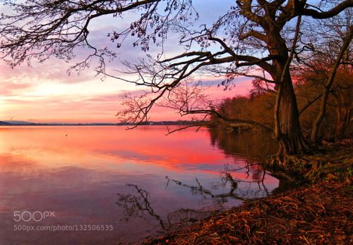 Farbpalette des Abendrotes / Color Palette / sunset by... Abendrot Baum Greifensee Ruhe See Spiegelung Farbpalette des Abendrotes / Color Palette / sunset ve