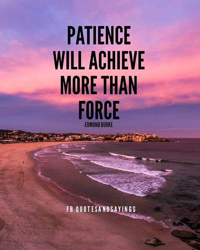 Patience Will Achieve More Than Force Edmund Burke Quotes