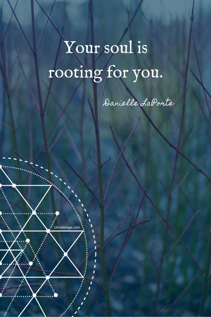 Danielle LaPorte Quotes: Your soul is rooting for you.
