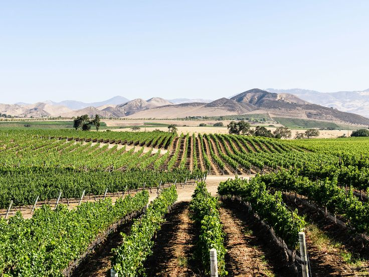 Local's Guide to Santa Ynez Valley | Find a little Wild West in Santa Barbara's wine country
