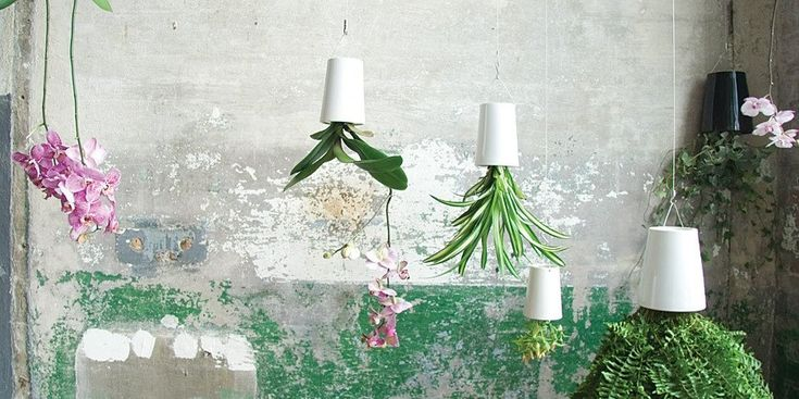 """Boskke is an innovative New Zealand company investigating new ways of bringing greenery into urban lives. The name Boskke is derived from an old English word """"bosky"""" meaning """"a small forest""""."""