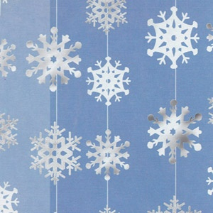 hanging snowflakes! would be really cute as a backdrop for photobooth