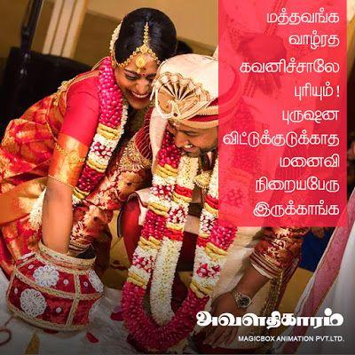 அவளதிகாரம் | மனைவியாதிகாரம் | செல்லமே செல்லம்