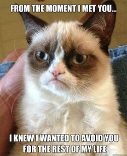 This is the GREATEST grumpy cat meme I have ever seen. Am I the only one who has ever had one of these moments? :P
