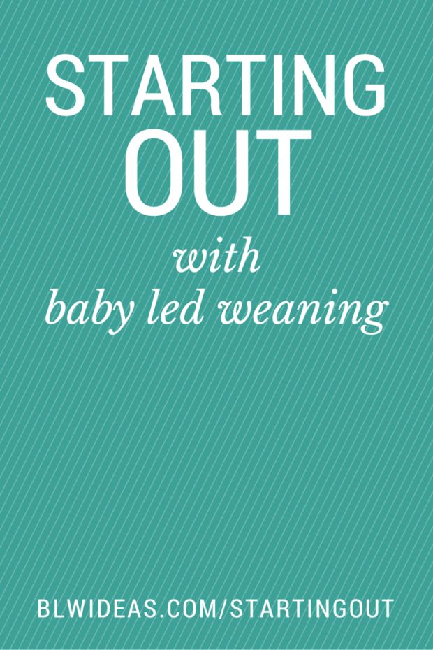 A thorough and informative Q&A style post about how to start out with baby led weaning. It addresses how much of each food, what shape foods, what the mealtime actually looks like, and more. It's the perfect post for you if you're a new mom with an almost-6-month-old and you want to do baby led weaning. blwideas.com/startingout