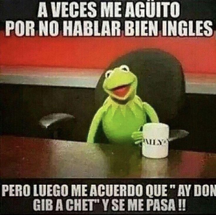 Ay Don Gib A Chet!! ~ Kermit The Frog