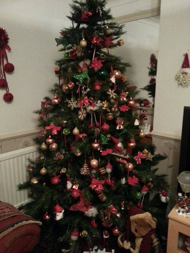 Find The Cat. A Hilarious Compilation Of The Constant Battle Between Cats & Christmas Trees • Page 2 of 5 • BoredBug