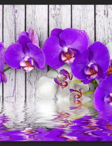 Carta da Parati Orchidee Viola su Legno Bianco Carta da Parati Fotomurale a Tema Natura e Fiori