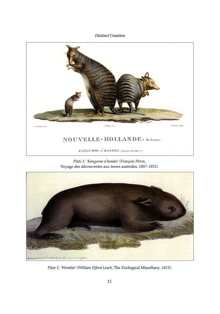 Kangaroos and wombats