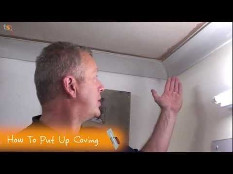 Putting up Coving a DIY Guide to Cutting Coving and Mitre Joints and using Coving Adhesive | DIY Doctor