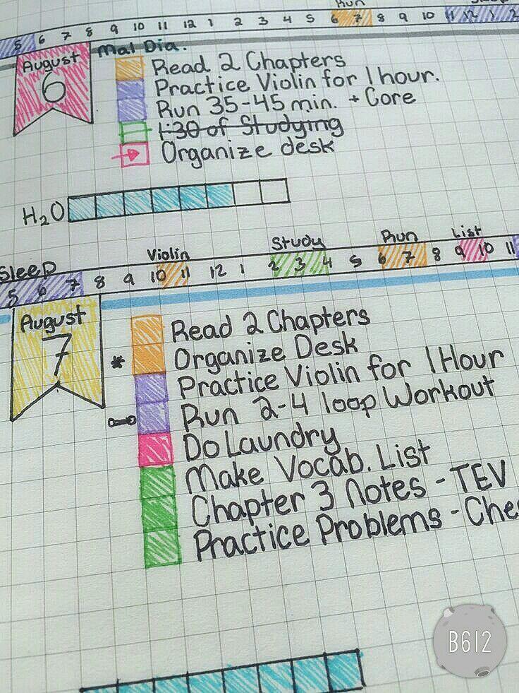I like the colored hourly activity tracker
