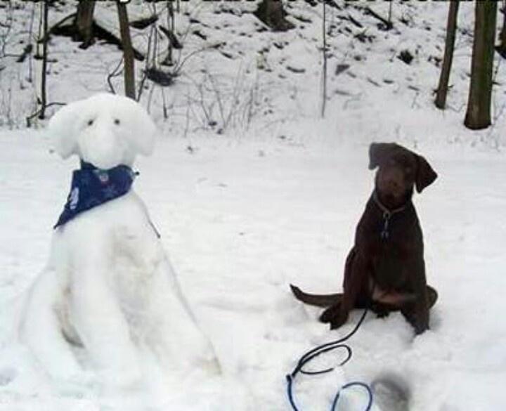 Bildergebnis für very beautiful snowman in Winter Wonderland