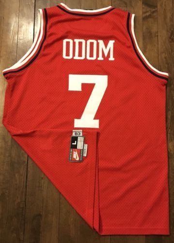 Los Angeles Clippers Lamar Odom Nike Swingman NBA Basketball Jersey Mens  Large (eBay Link) a1fef19a9