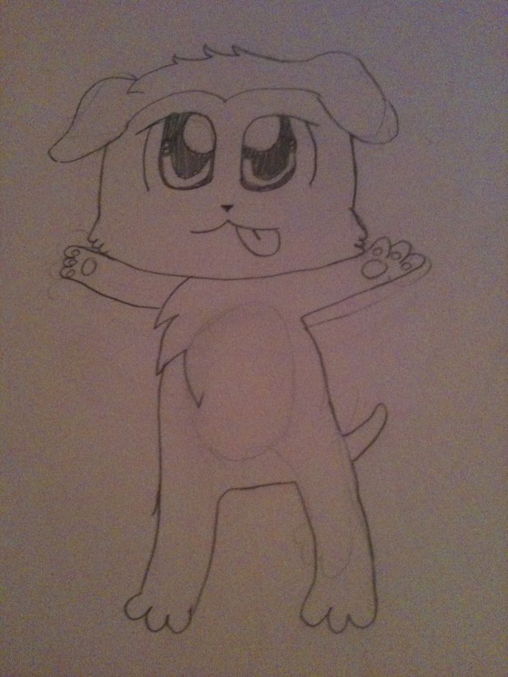 how to draw lps collies