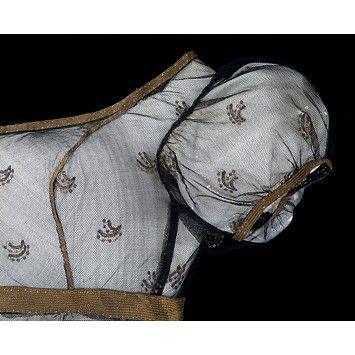 An absolutely excellent guide to the machine-made net overlays used on the high-waisted muslin dresses popular during Austen's adulthood. Also see this blog for a terrific review of THE ANNOTATED EMMA, by Jane Austen, edited and annotated by David Shapard.