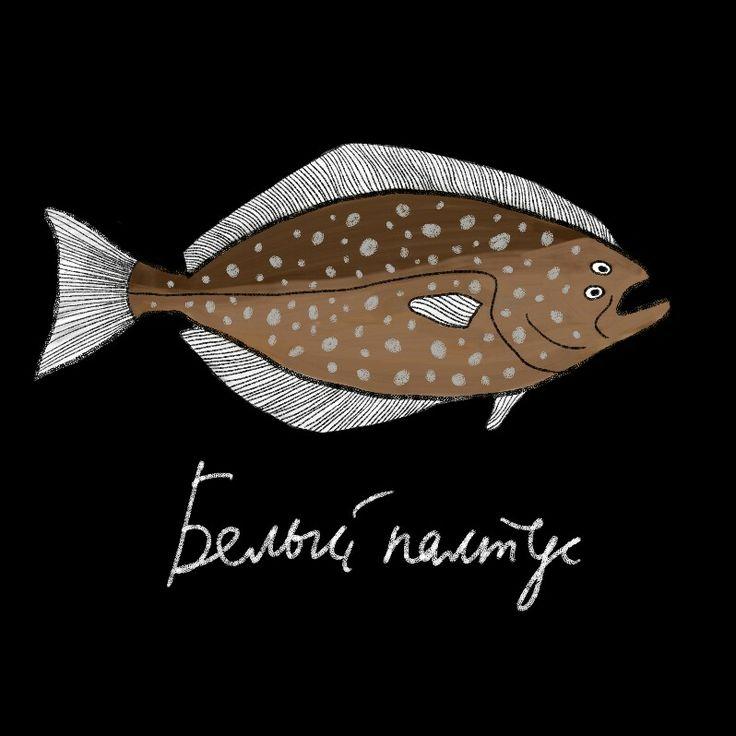 Atlantic halibut