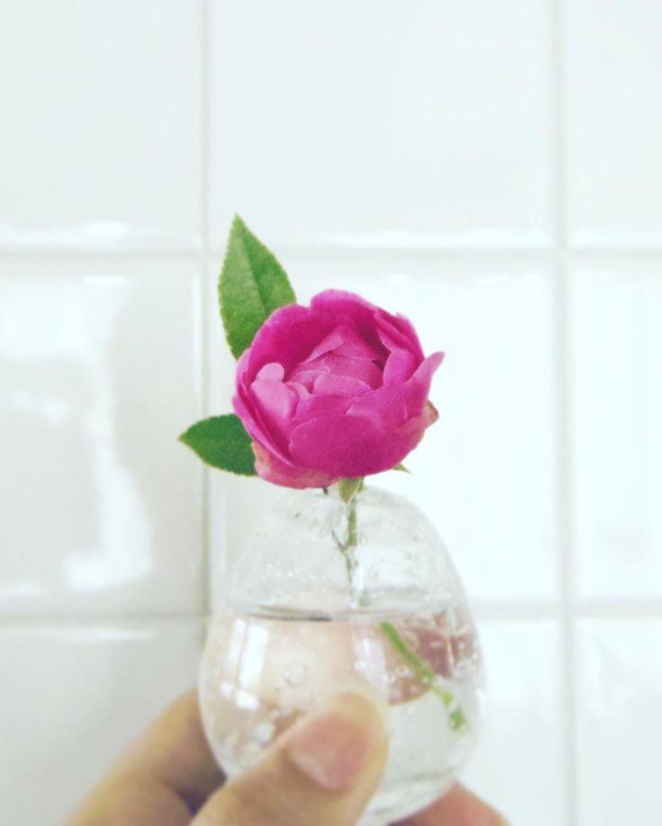 #バラ#rose#flower#一輪挿し