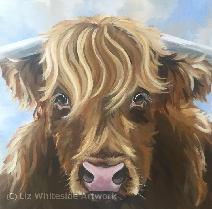 Hamish - Highland Cow.  His original acrylic is for sale via a gallery.  See my website for info.