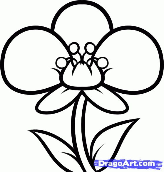 97 best drawing images on pinterest drawing for Simple flower drawing tutorial