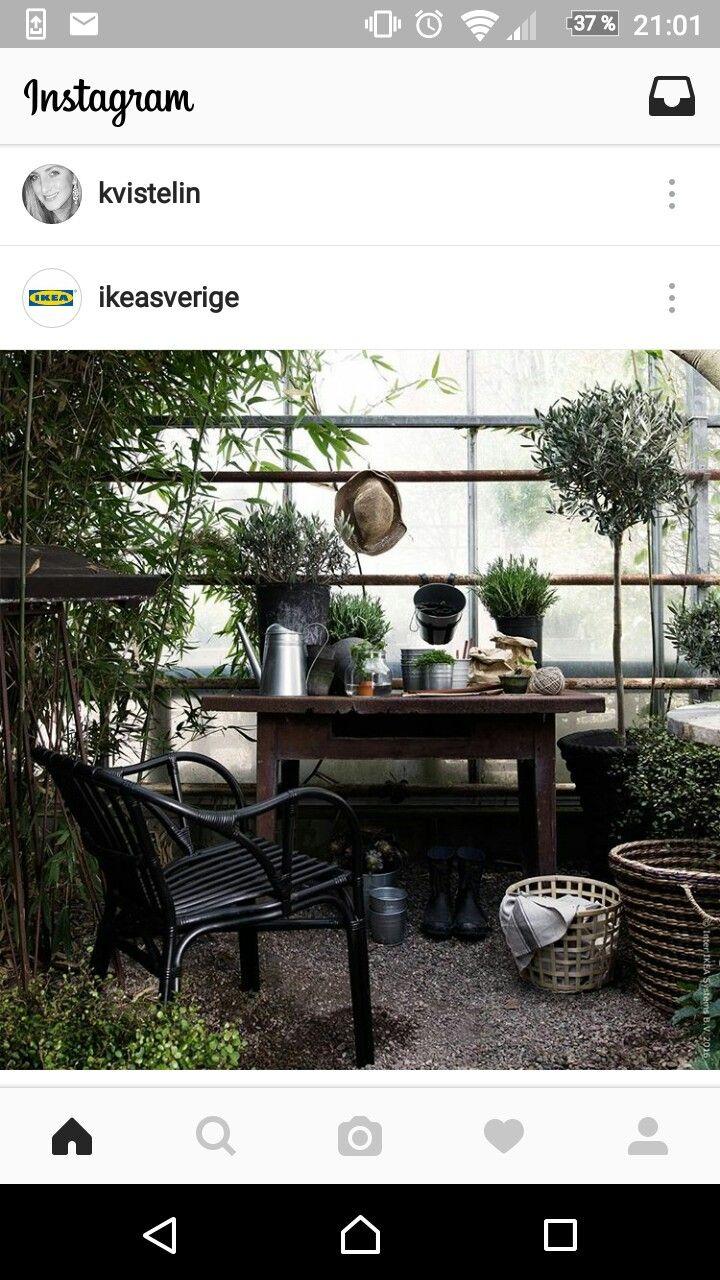 Inspiration för växthus. rustikt bord som planteringsbänk, skön ...