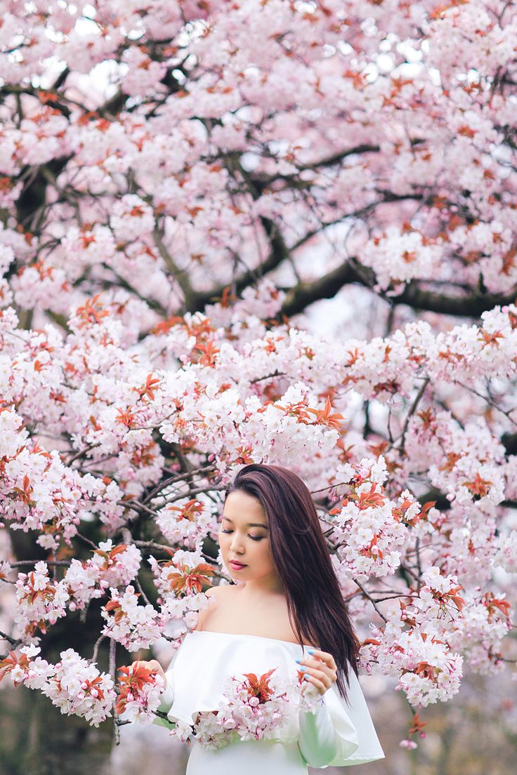 asian singles in spring park Elitesingles is the market leader for professional dating join today to find asian singles looking for serious, committed relationships in your area.