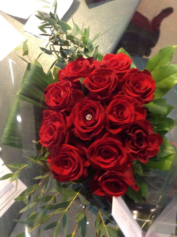 Roses Freedom ...