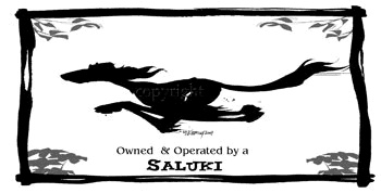 Owned and operated by a Saluki :-)