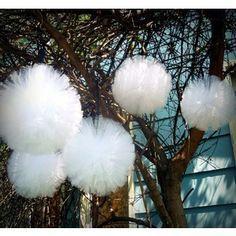 Utendørsbryllup? Disse ballene av tyll er vakre i trærne - eller hengene fra telttak osv. De er selvsagt like vakre innendørs. Faksimile: Etsy.com