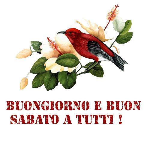 """Gif """" BUON SABATO, GOOD SATURDAY, BON SAMEDI """" in GIF SALUTI GIORNALIERI ~*-.,♥,.-*~ GIF BUON WEEK END ~*-.,♥,.-*~ Gif BUONA SETTIMANA Forum"""