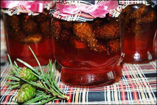 Варенье из сосновых шишек - сосновый мед