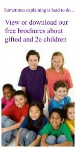 """ANNOUNCING our new, FREE downloadable brochure on 2e kids!  What is 2e? Twice exceptional, or """"2e,"""" children are intellectually gifted and also have learning differences or disabilities."""
