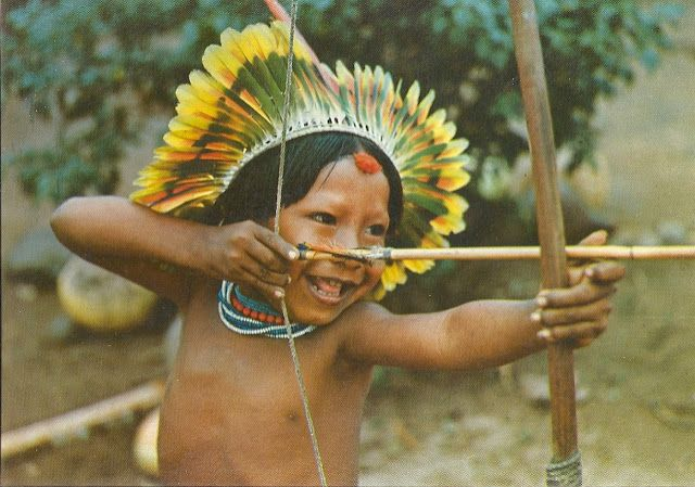 Protection de l'Amazonie - Page 2 55ff0164eb07c8cd96412c90fd4baa05--brazil