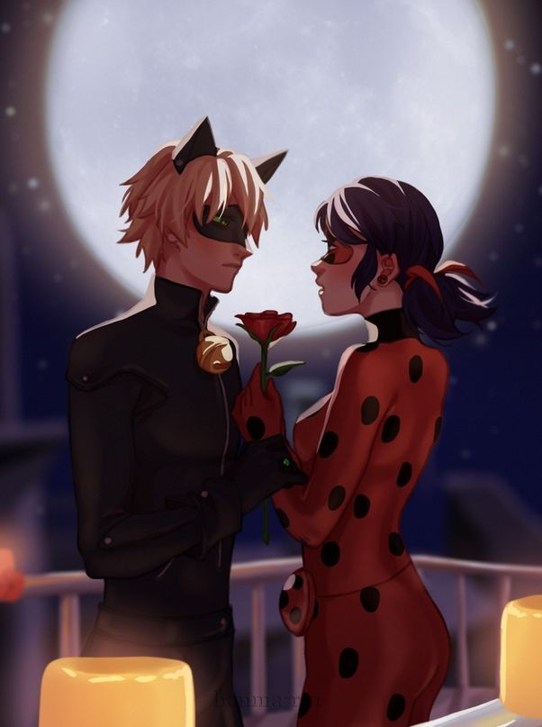 Miraculous Ladybug Lady Bug And Super Cat в 2019 г кот