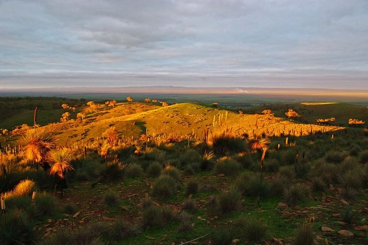 Sunset lighting the range and the Willochra Plains to the East