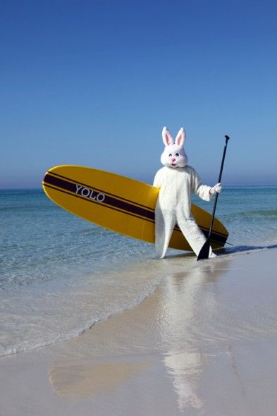 Even the Easter Bunny Loves to Paddle Board!