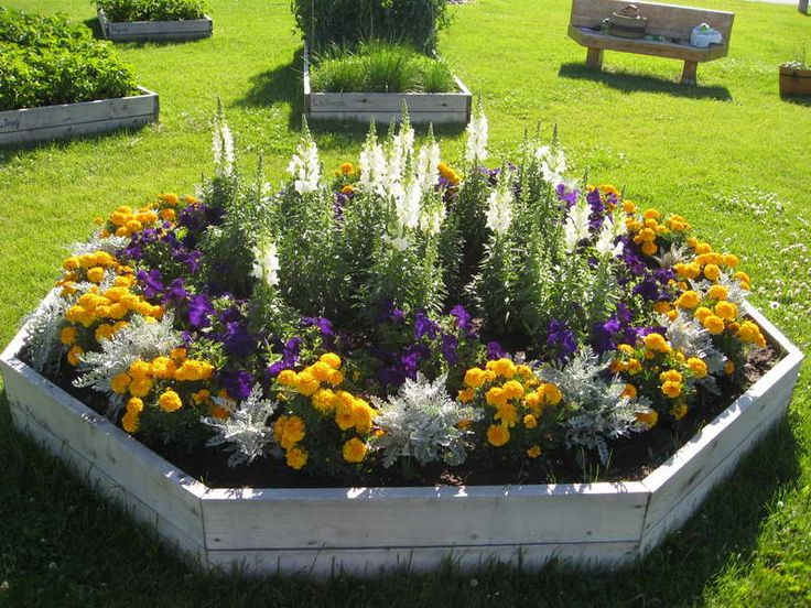 annual flower bed designs with wooden board