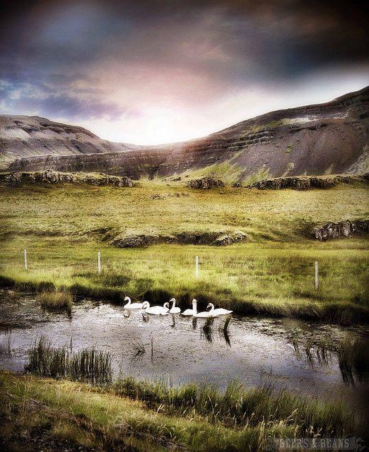 Iceland Travel Tips - Ordinary Traveler
