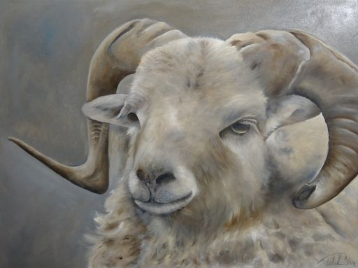 Wilma Westerlaken - paintings by wilma