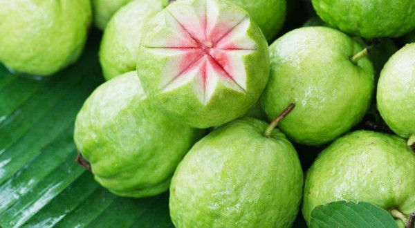 Amazing Health Benefits of Guava Fruits. Guavas are a very common type of fruit but are often neglected because of their hardness & presence of seeds. It contains goodness that will make you definitely want to eat this fruit but we are not talking about having sugar rich guava jams or jellies. For getting these super benefits of guava, you need to grab a fresh one and bite on it. http://www.healthdigezt.com/amazing-health-benefits-of-guava-fruits/