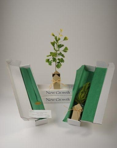 Memorial Gift Trees - Gift-Boxed Gingko. Send a tree as a sympathy gift. Plant a tree to honor someone? Love it! Flowers never last. This is a great idea. Different trees to choose from too.