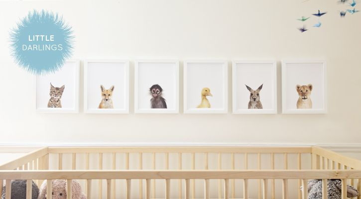 baby room, baby animals