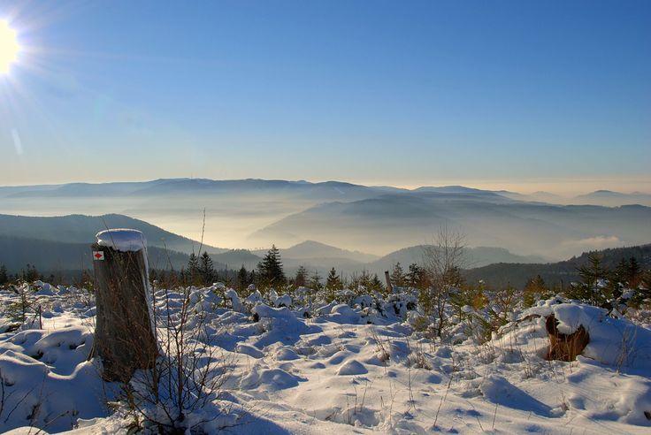 Für einen ereignisreichen Tag im Schnee bieten Dobel und Bad Herrenalb ideale Bedingungen - vor allem zum Langlaufen, Schlitten fahren und Schneeschuh-Wandern.