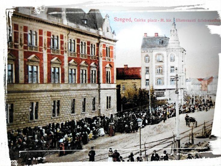A Széchenyi téri piacokat a parkosítási munkák megkezdése miatt helyezték àt 1894-ben a Tisza Lajos körút járdáira.A MÀV üzletvezetőség oldalàn,a Wöber palota előtt előtt,egèszen a Mikszáth Kálmán utcáig zsibongott a csirkepiac. (Lajos Vetro)