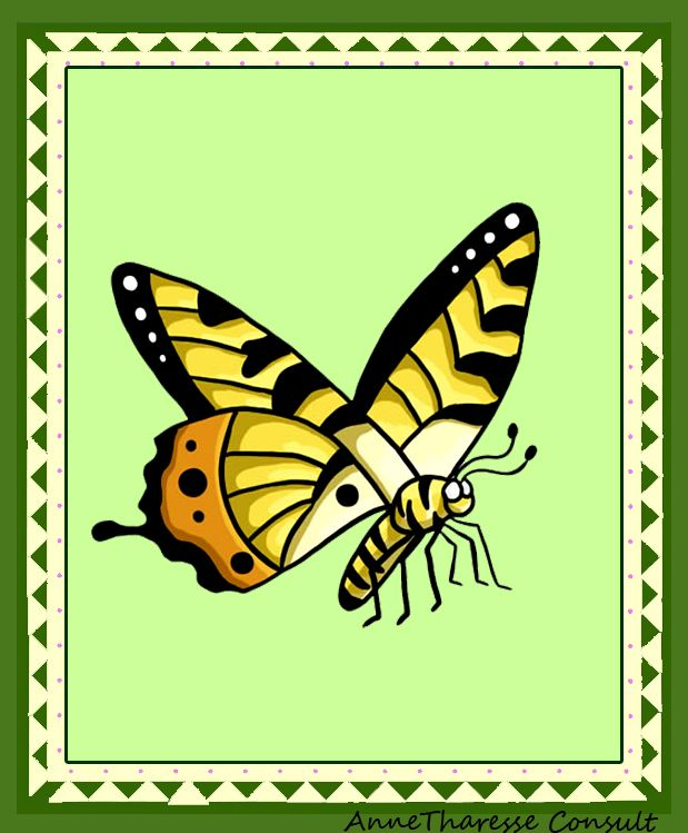 Cartonaşe ilustrate – Fluturi