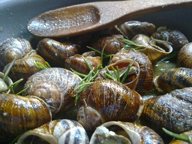 cretan snails (chochlioi boubouristoi) #Iridaresort www.iridaresort.com