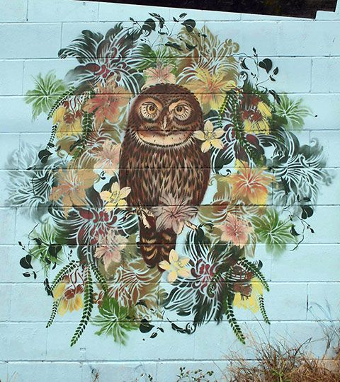 Flox is New Zealand's queen of the stencil. Her artworks are made up of layer upon layer of flowery, birdy goodness.